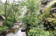 Visita a la Cascada Cola de Caballo de Nocedo
