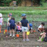 Talleres infantiles en la Fundación Cerezales para este verano
