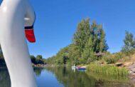 Un paseo en cisne por el Lago de Sahechores