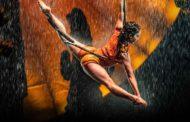 Espectáculos del Circo del Sol on line