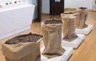 Visita al museo del chocolate de Astorga con niños